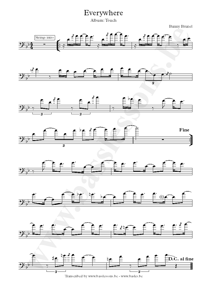 Bunny Brunel everywhere bass transcription